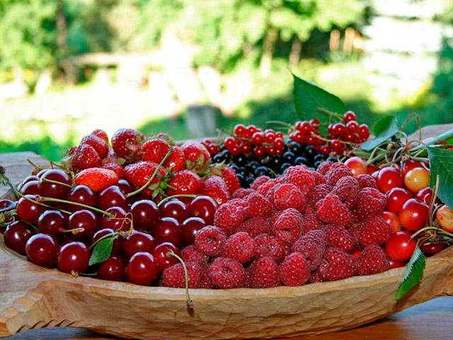 Малина и вишня при сахарном диабете
