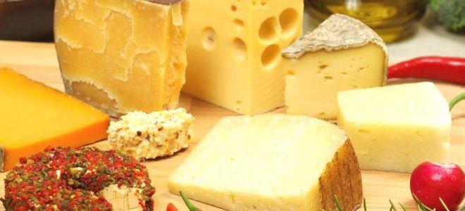 Можно ли есть сыр при сахарном диабете?
