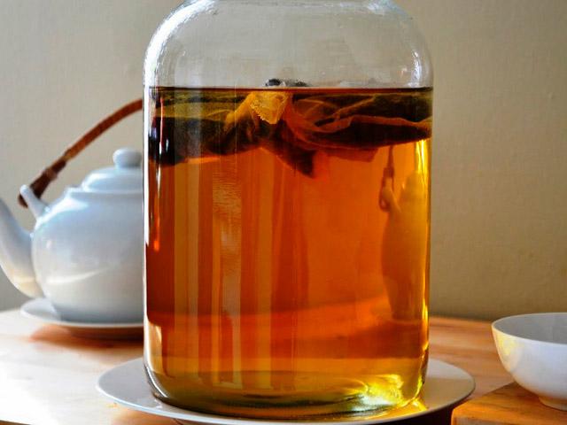 Что такое чайный гриб?