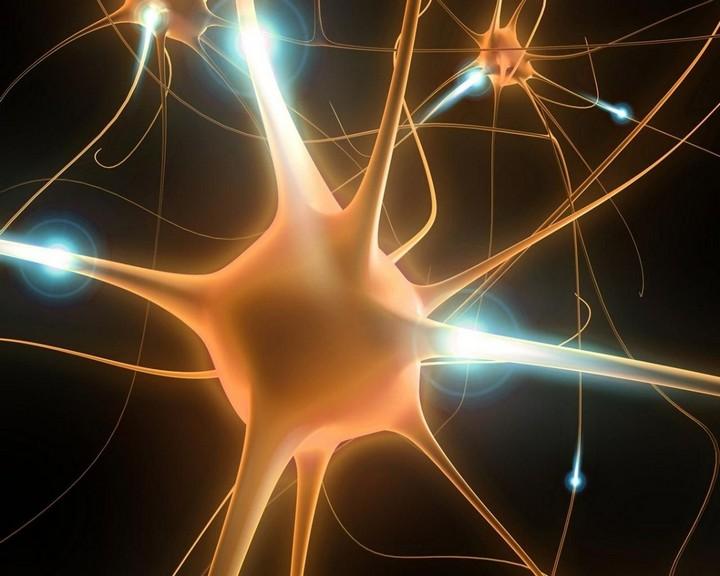 нейрон
