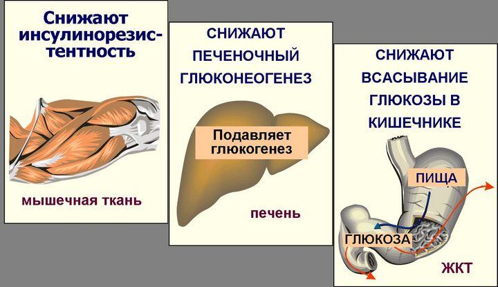 преимущества глюкофажа